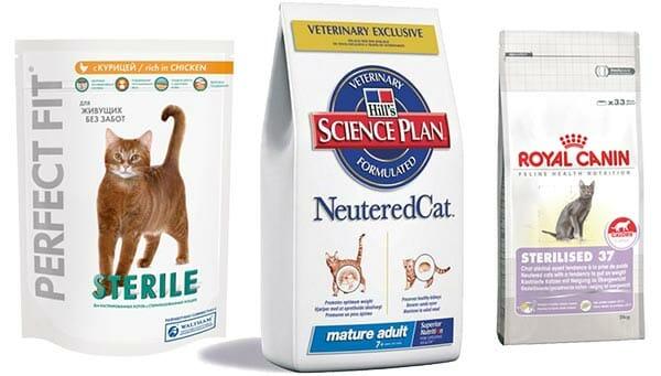 """Корм для кошек """"Органикс"""": отзывы, состав, советы ветеринаров"""