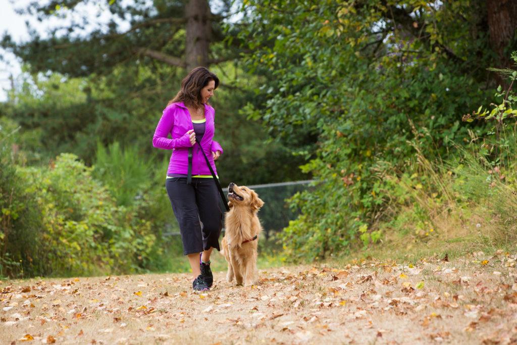 Гуляйте с собакой как минимум 2 часа в день