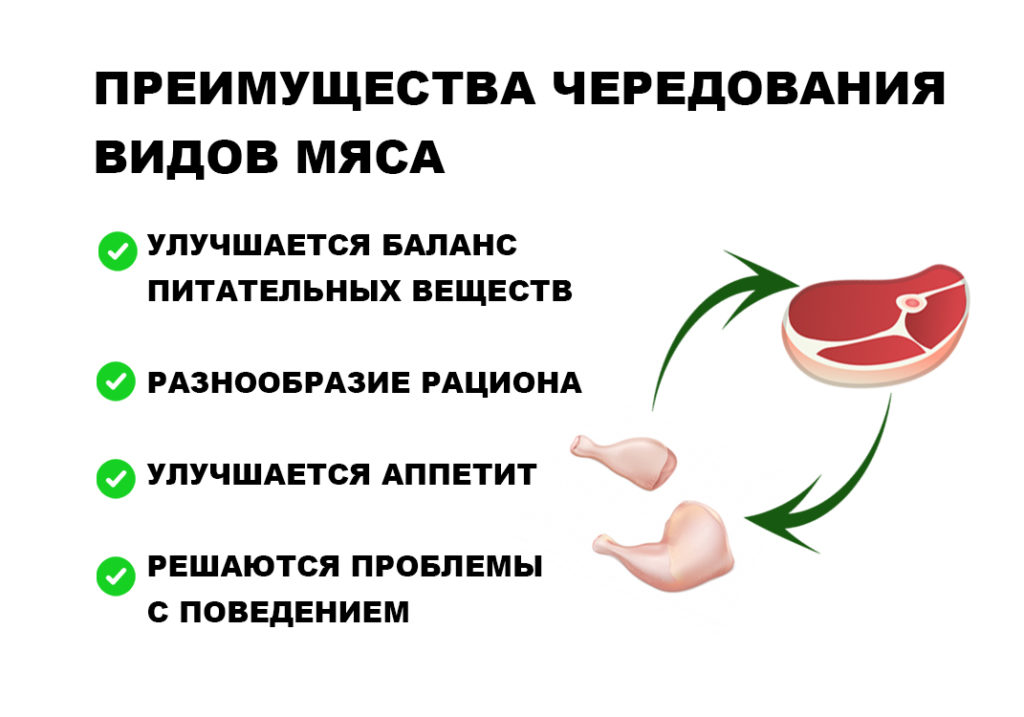 Преимущества чередования видов мяса коротко