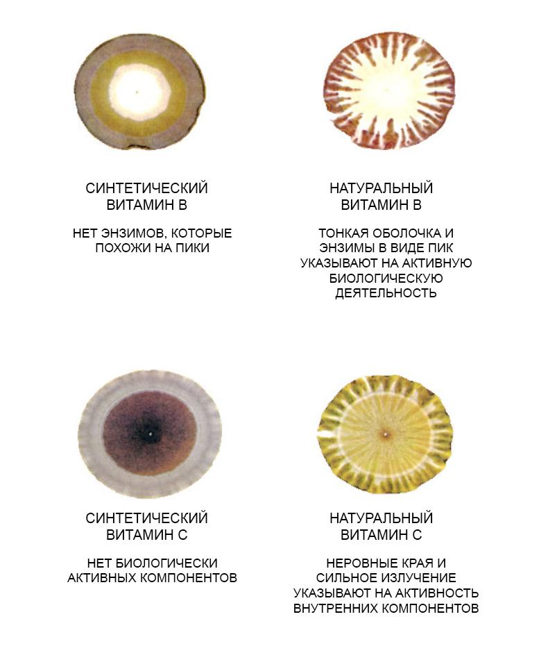 Натуральные и синтетические витамины под микроскопом